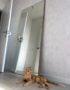 напольное зеркало на подложке из дуба